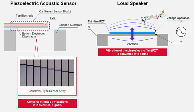 Piezoelectric Acoustic Sensor Loud Speaker and